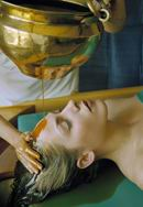 the raj_ayurveda_health_spa_treatm.